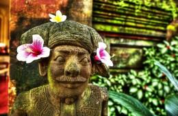 Bali FX