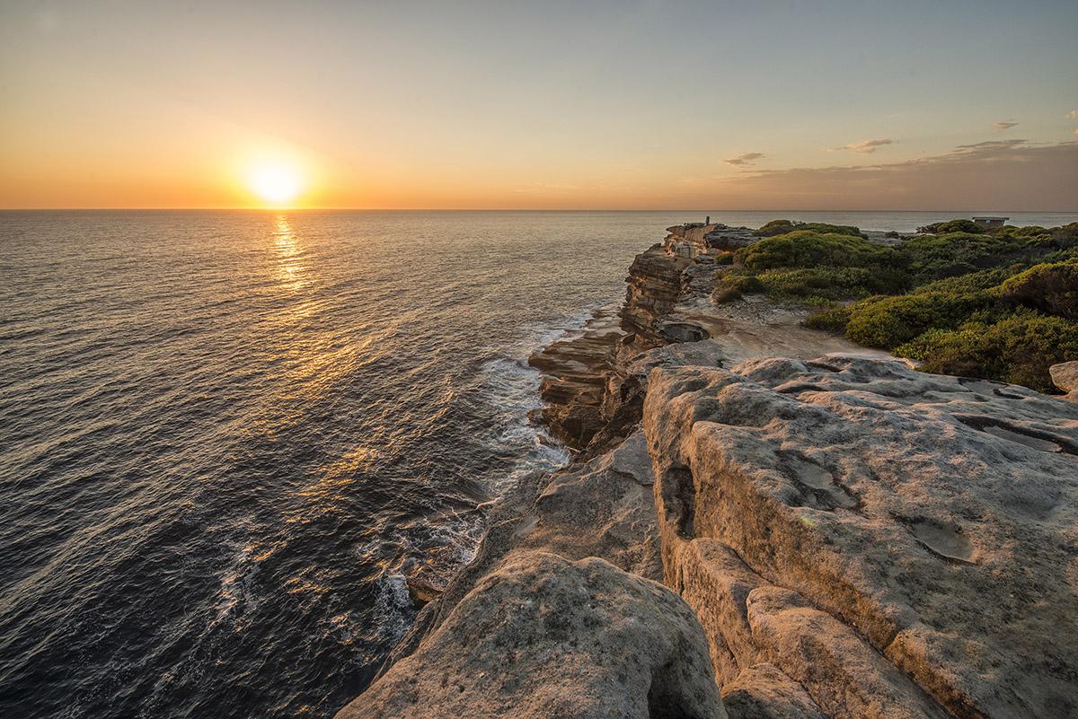 Sydney Rock VII