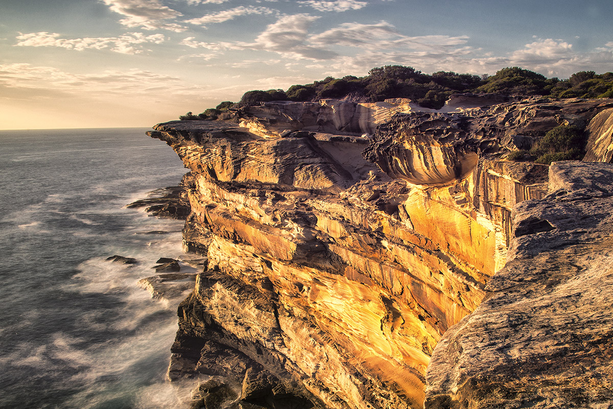 Sydney Rock VIII