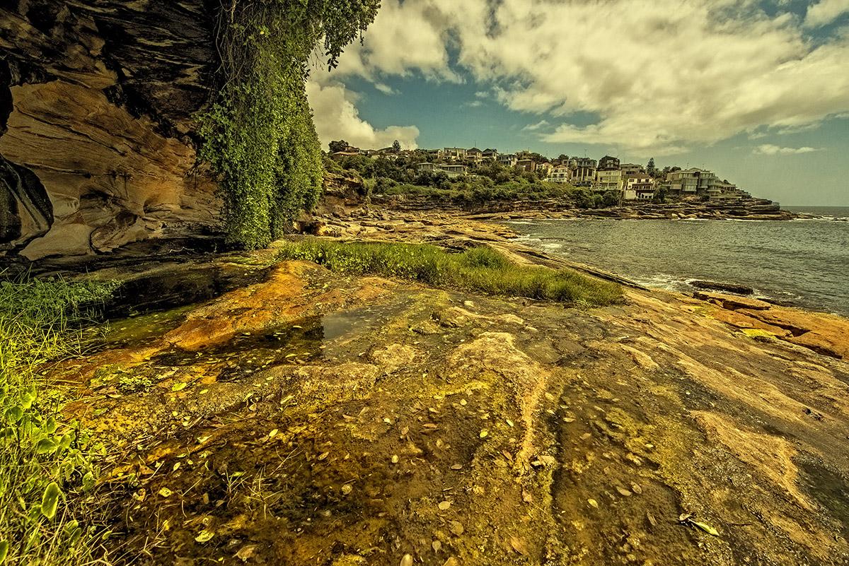 Sydney Rock IX
