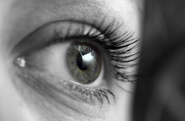 Eyes of Maud