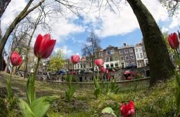 Utrecht Spring 2
