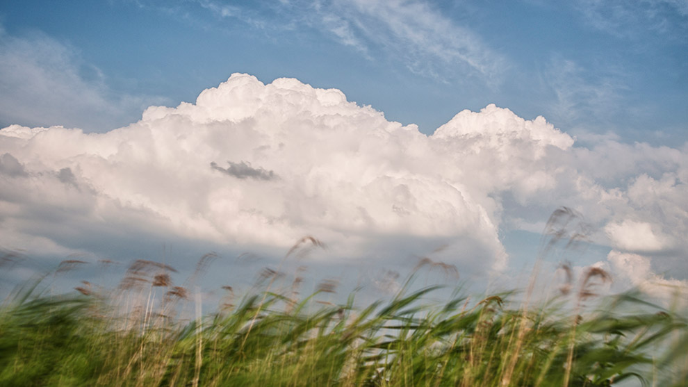 Dutch-Skies-Color-09