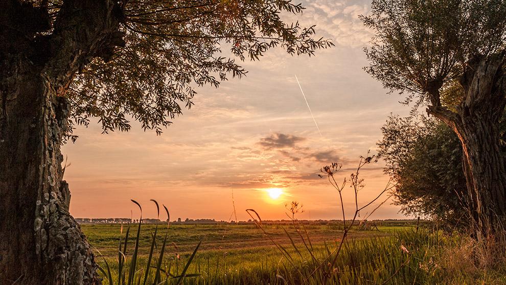 Dutch-Skies-Color-16