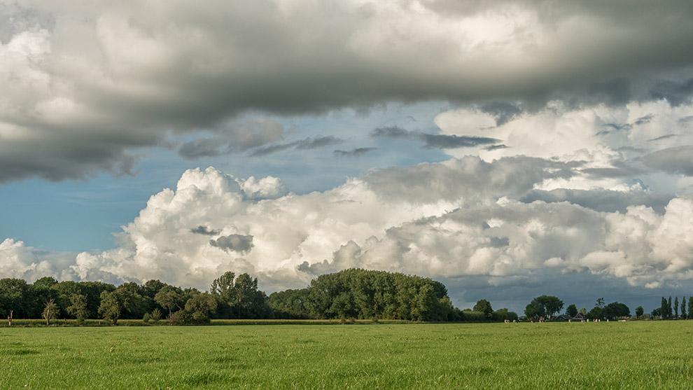 Dutch-Skies-Color-19