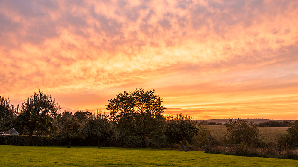 Dutch-Skies-Color-23
