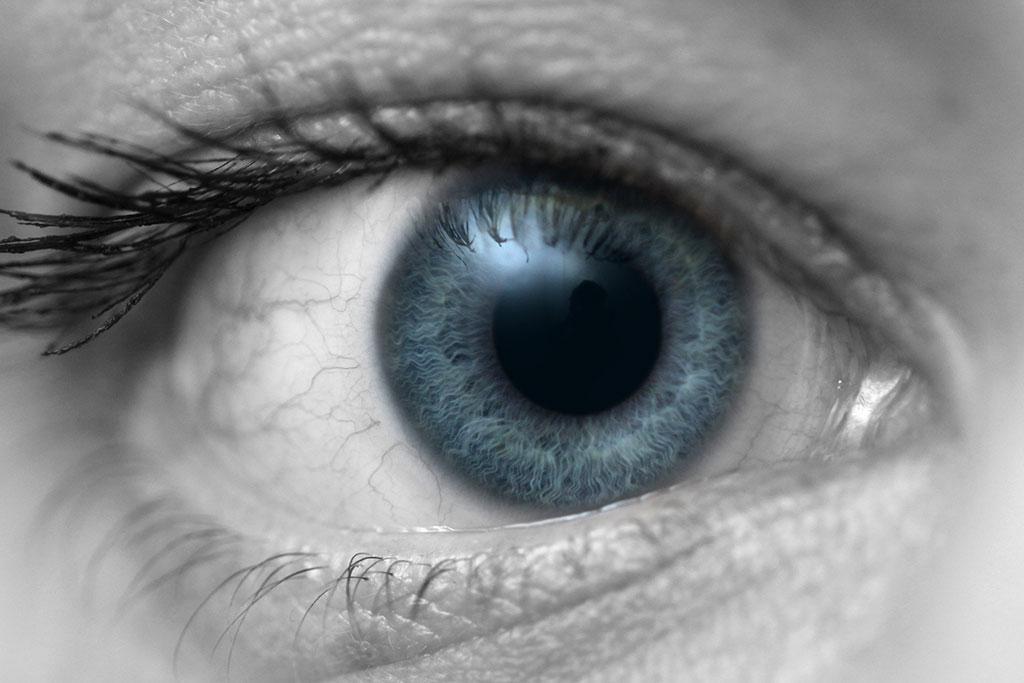 009-024-017-Eyes-of-Herma-02