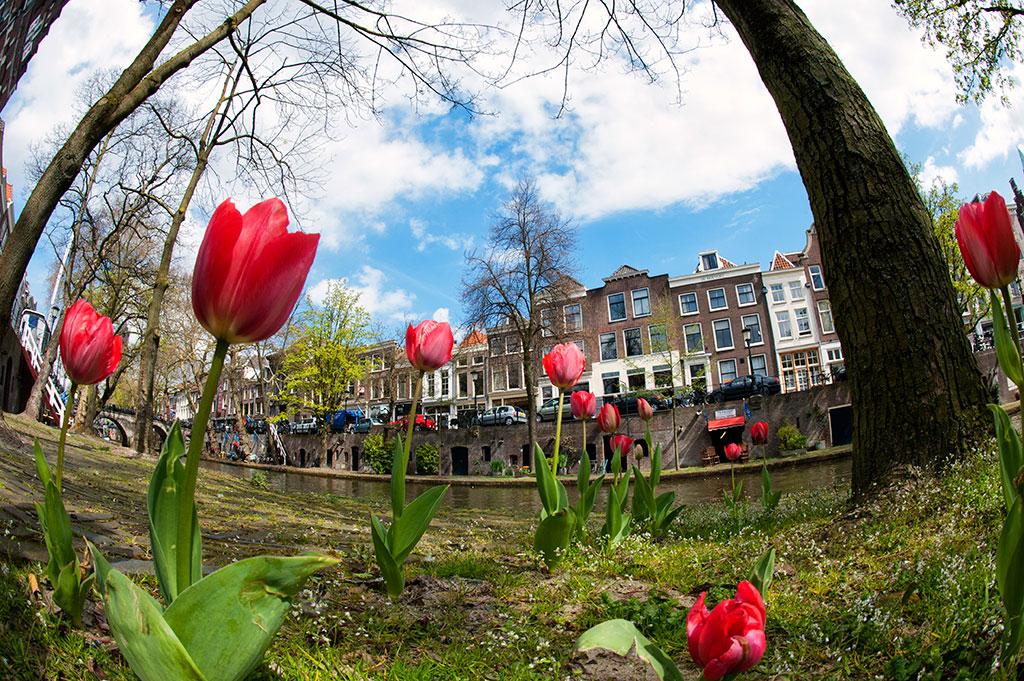 037-Utrecht-Spring-2012-06-Oudegracht