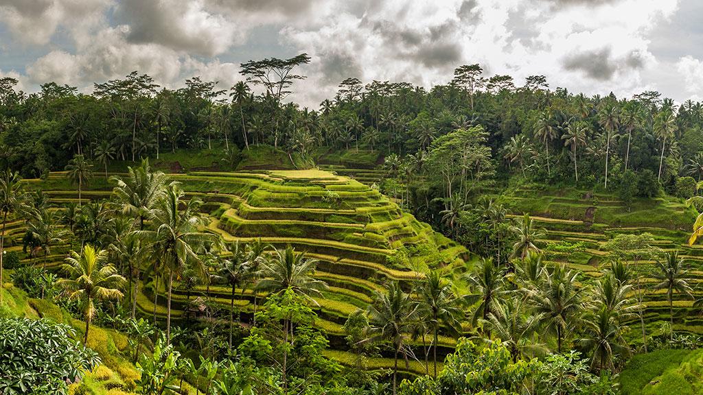051-Indonesia-1-Bali-046