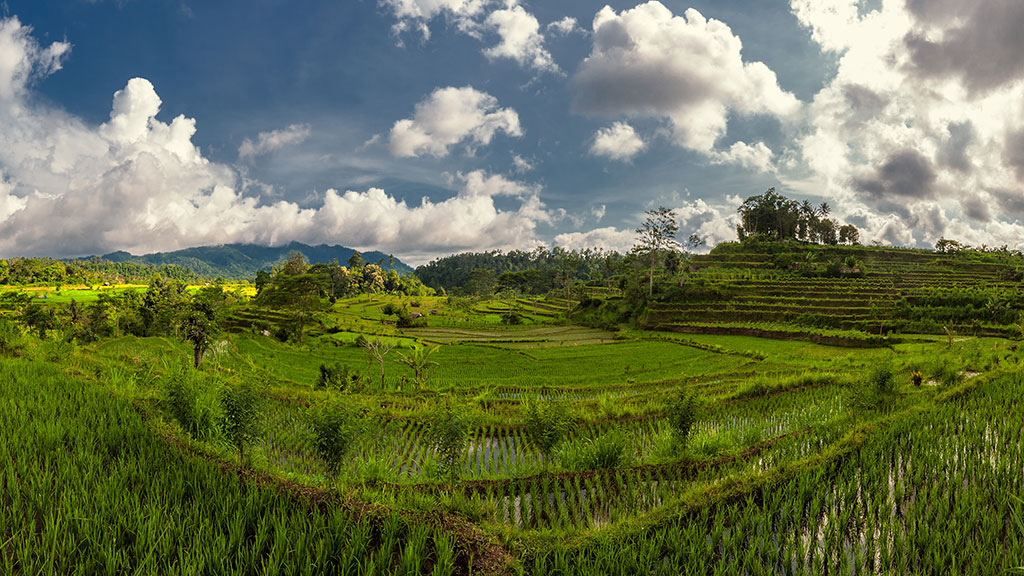 052-Indonesia-1-Bali-047