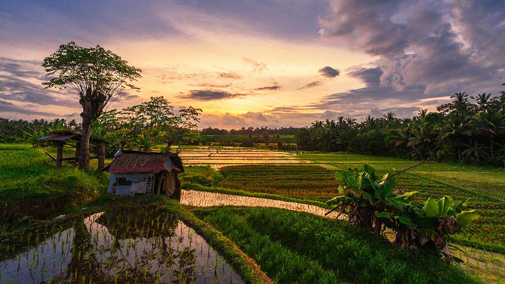 061-Indonesia-1-Bali-078