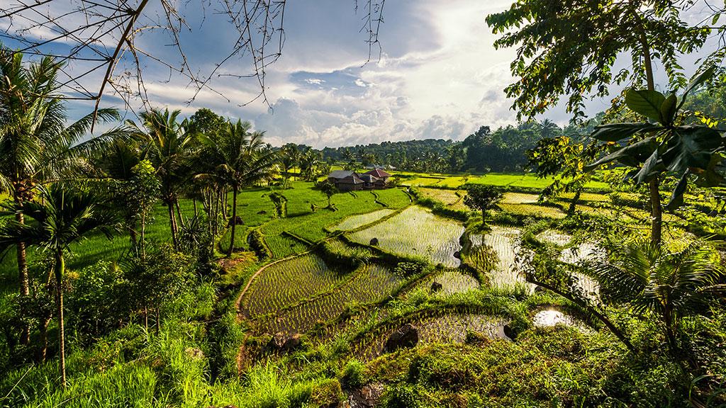 076-Indonesia-3-Lombok-001
