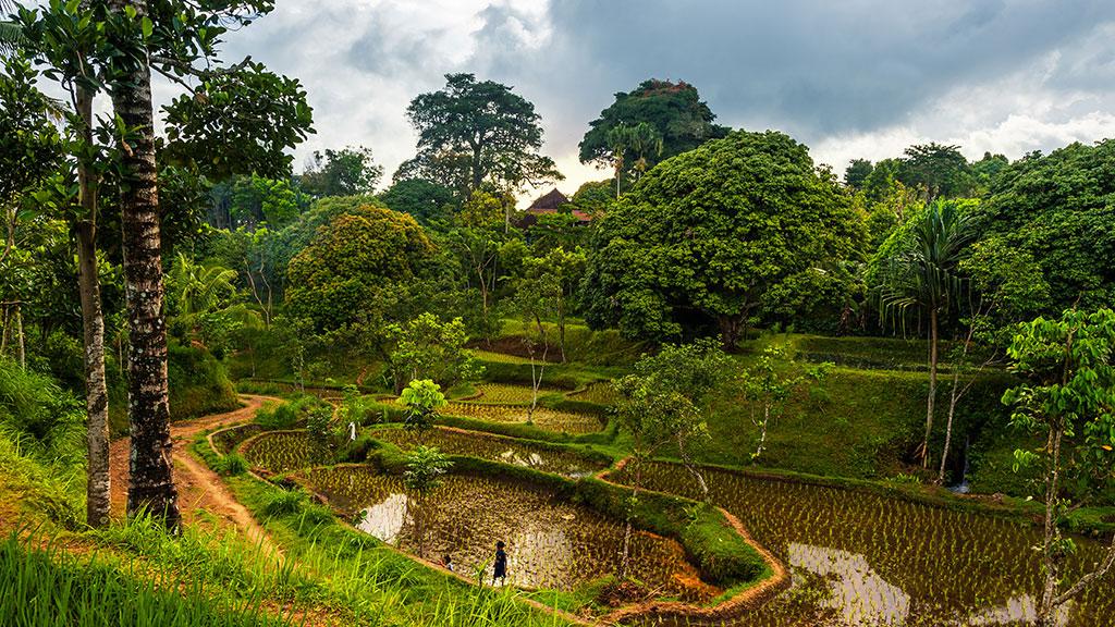 078-Indonesia-3-Lombok-006
