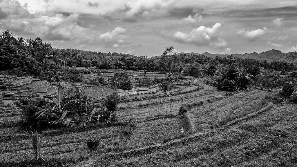 Indonesia-black-1-Bali-010