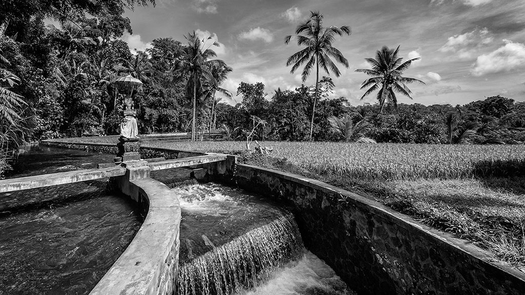 Indonesia-black-1-Bali-030