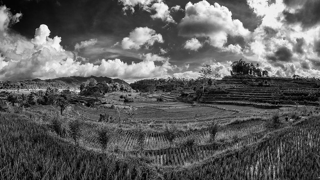 Indonesia-black-1-Bali-047