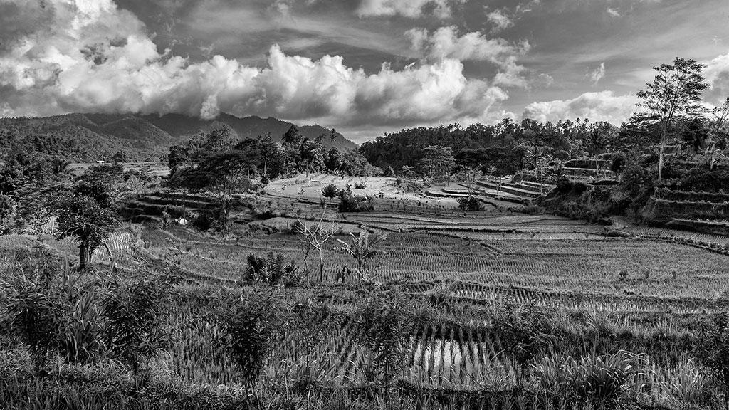 Indonesia-black-1-Bali-048