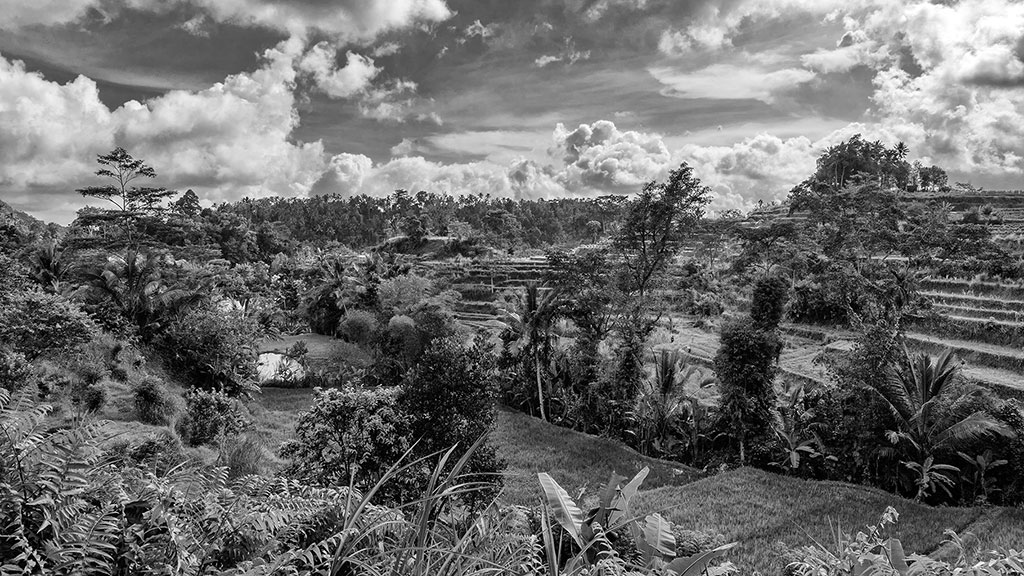 Indonesia-black-1-Bali-049