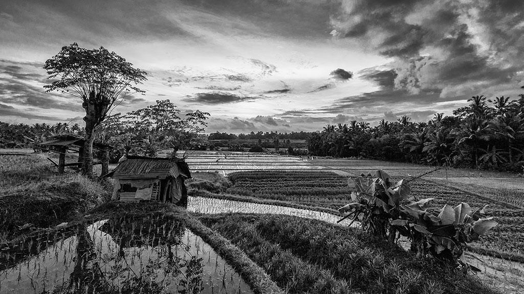 Indonesia-black-1-Bali-078