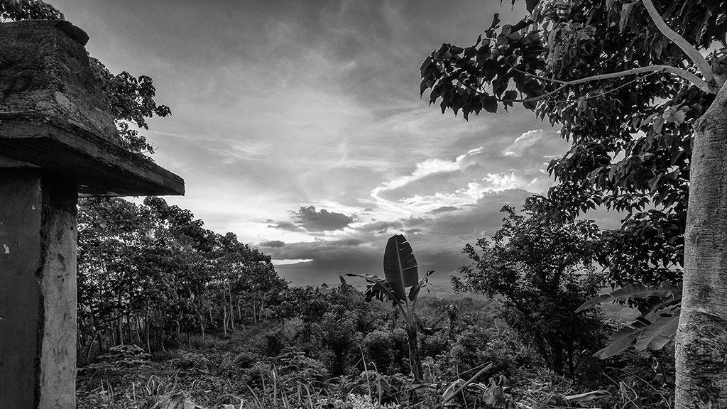 Indonesia-black-6-Flores-027