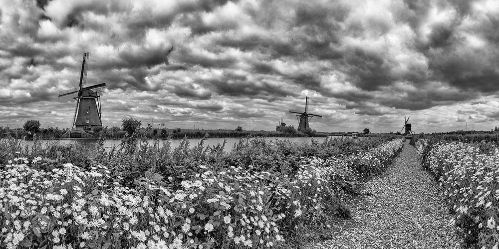 Kinderdijk-panorama-10